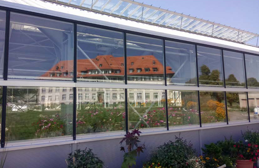 Copyright: Grangeneuve
